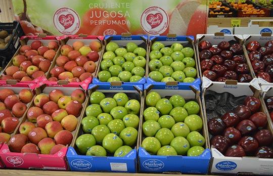 Calidad de frutas y verduras León
