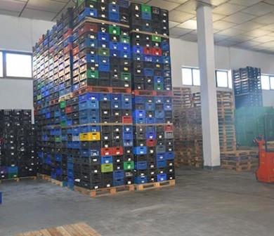 Interior de almacén fruta León