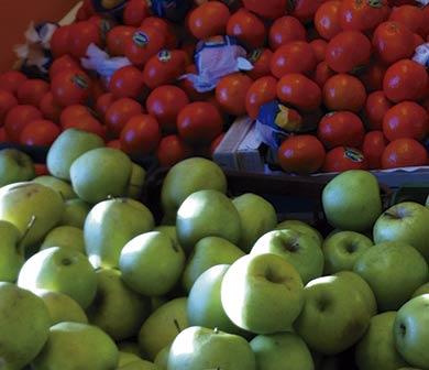 tomates y manzanas
