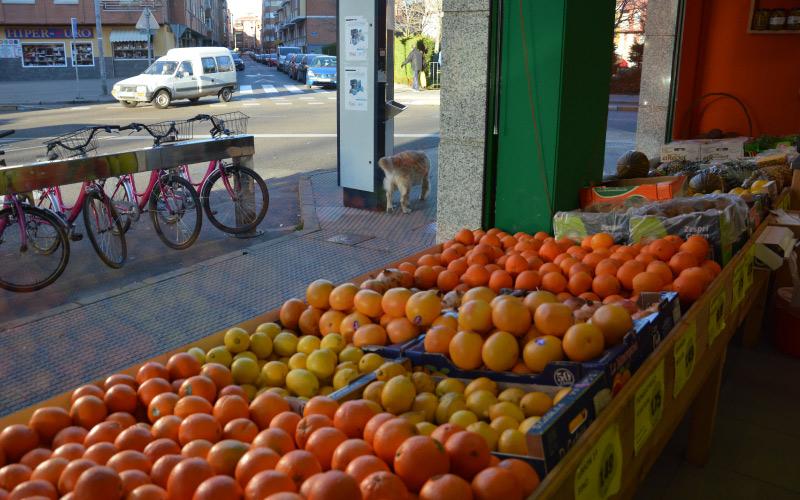 fruteria-y-verduras-los-robles-2