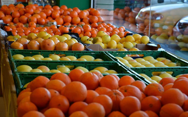 fruteria-y-verduras-san-ignacio-loyola-7