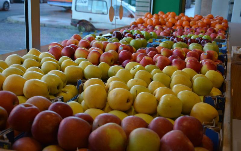 fruteria-y-verduras-san-ignacio-loyola-8