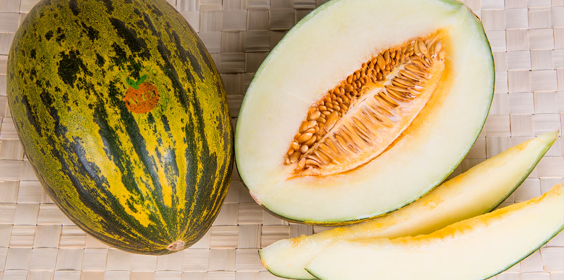 comprar-melon-leon