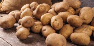 comprar_patata_vieja_en_leon